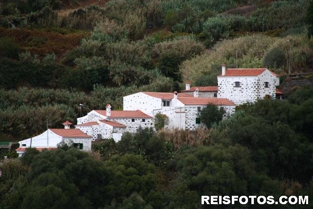 San José del Álamo