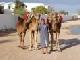 Tunesië algemeen