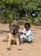 Gambia algemeen