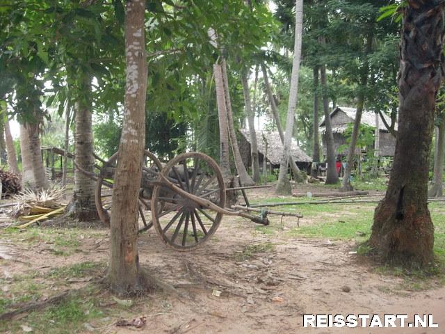 Omgeving Siem Reap