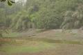 Abuko Natuur Reservaat
