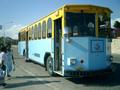 Bus Curacao