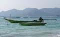 Long Tail boten