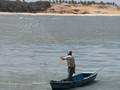 Visser bij Tibau do Sul