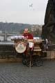Muzikant op de Karelsbrug