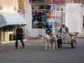 Centrum Hurghada