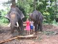 Olifant met haar kleintje