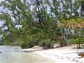Strand Panglao