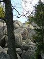 Stenen rivier op de Vitosha berg