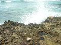 Ruwe kust