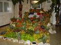 Dominicaanse groente en fruit