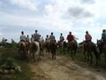 Ecologische tour of jeepsafari