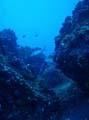 Galapagos duiken
