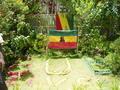 Bob Marley / Nine Miles